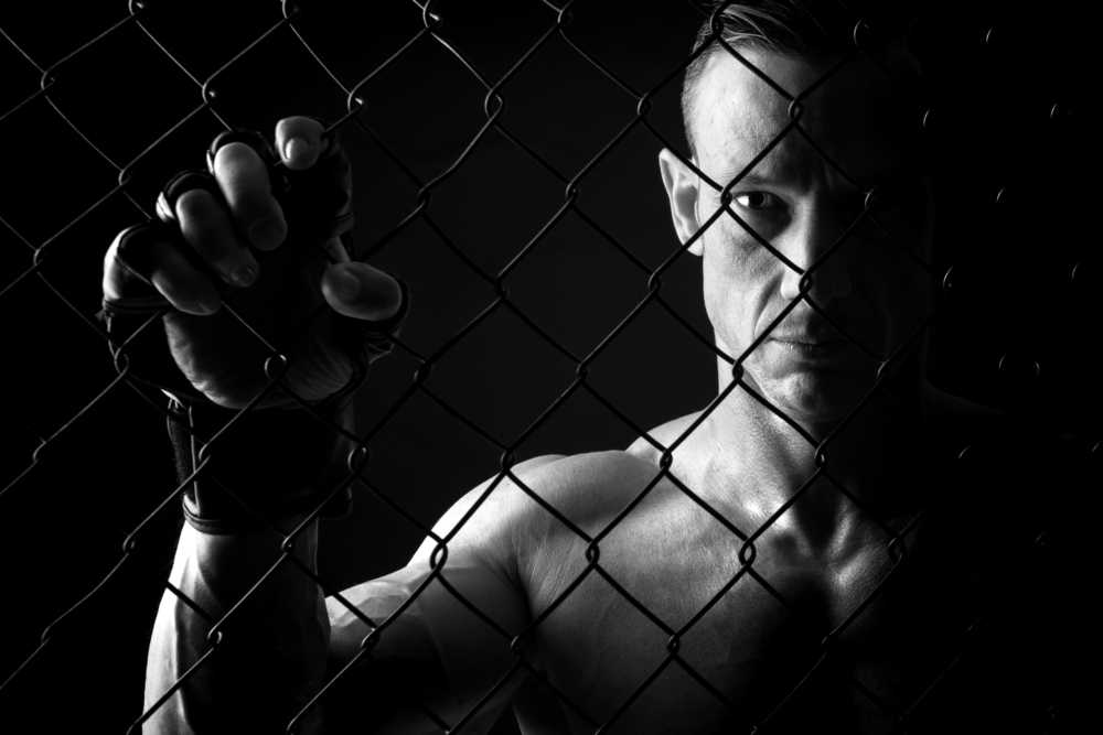 The Right Proteins for MMA Fighters